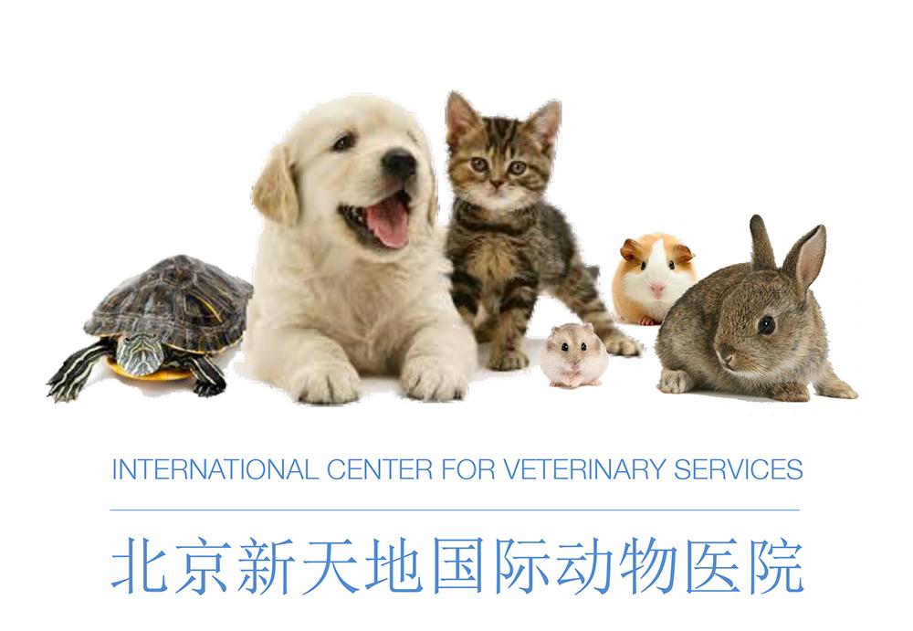 ICVS Logo Full Line Up 2015